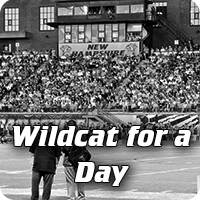 Wildcat for a Day